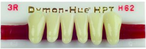 Dymon-Hue Lower Anterior, nue hue, dentsply,anterior, acrylic teeth, justi